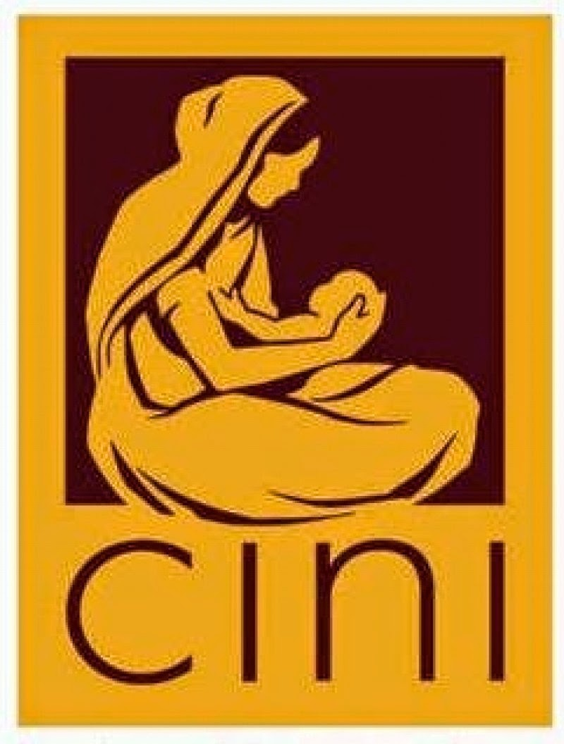 Child In Need Institute (CINI) Vacancy: Database Manager - Kolkata, West Bengal