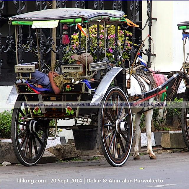 Dokar dan Alun-Alun Banyumas | foto oleh Klikmg Fotografer Purwokerto