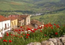 My Bella Basilicata