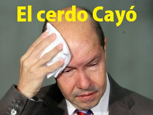 El Cerdo DEMOstenes Cayó...