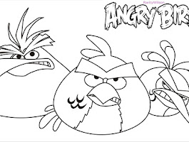 Exotic Birds Colouring Pages