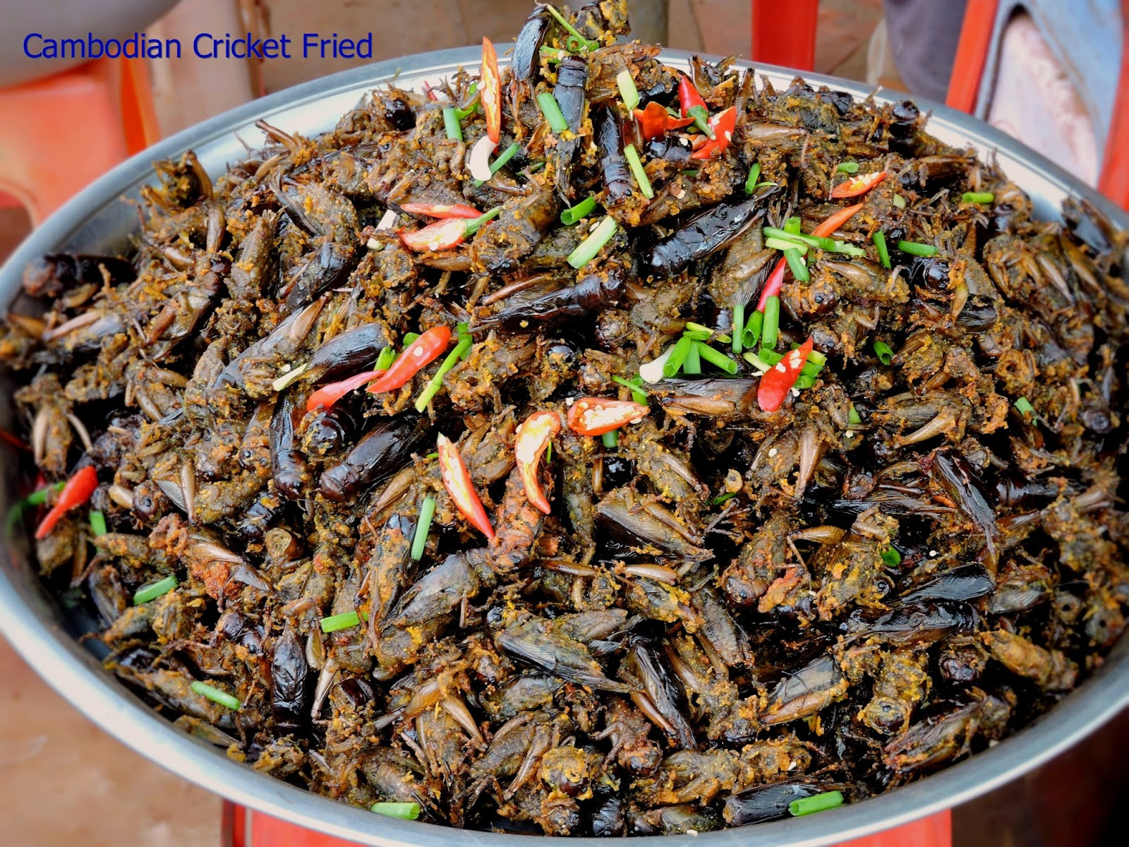 Empire Free Knowledge: Special Cambodian Foods, Fried ...