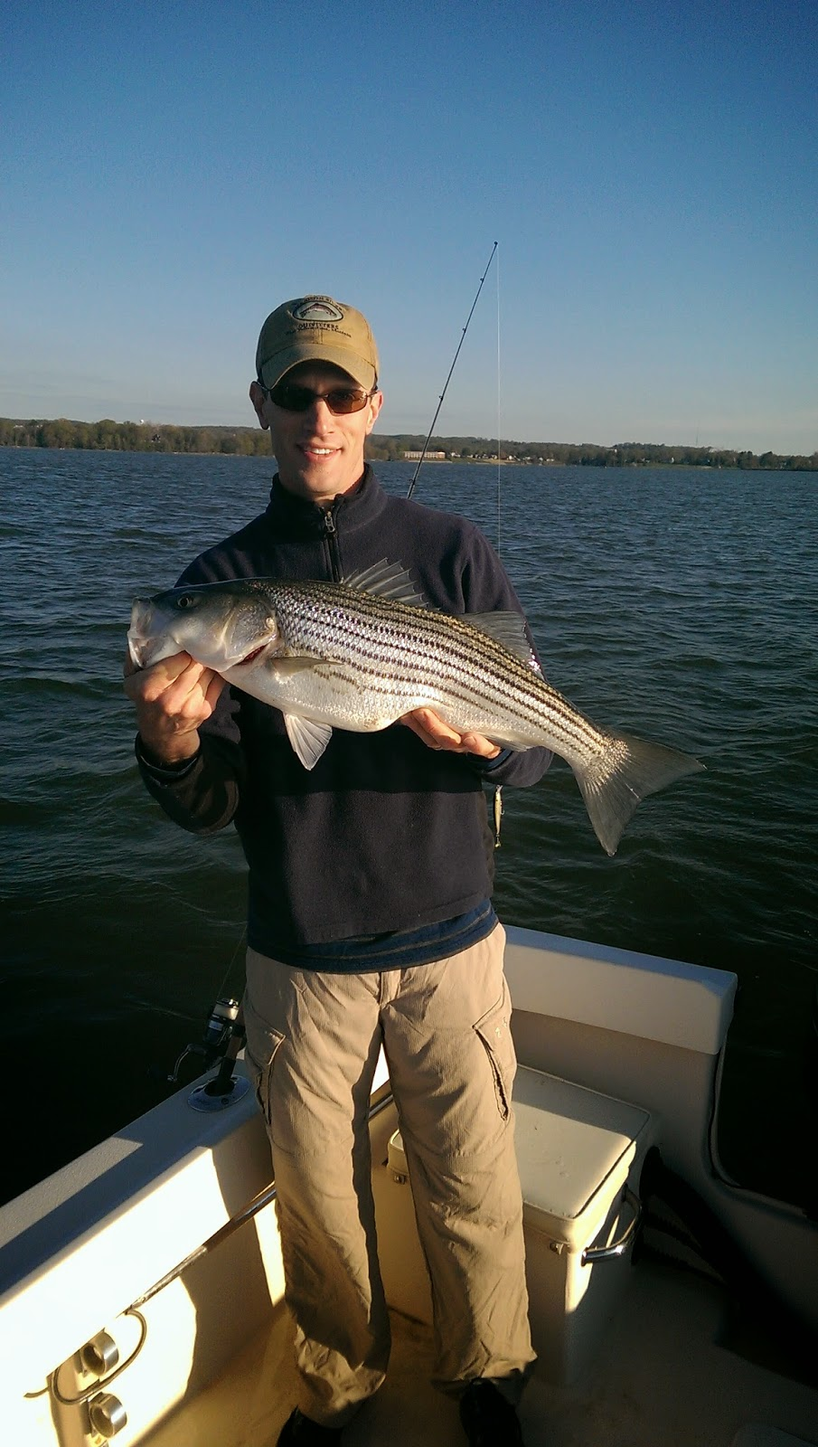 Lew 39 s fly angler chesapeake bay and gunpowder river for Chesapeake fishing report