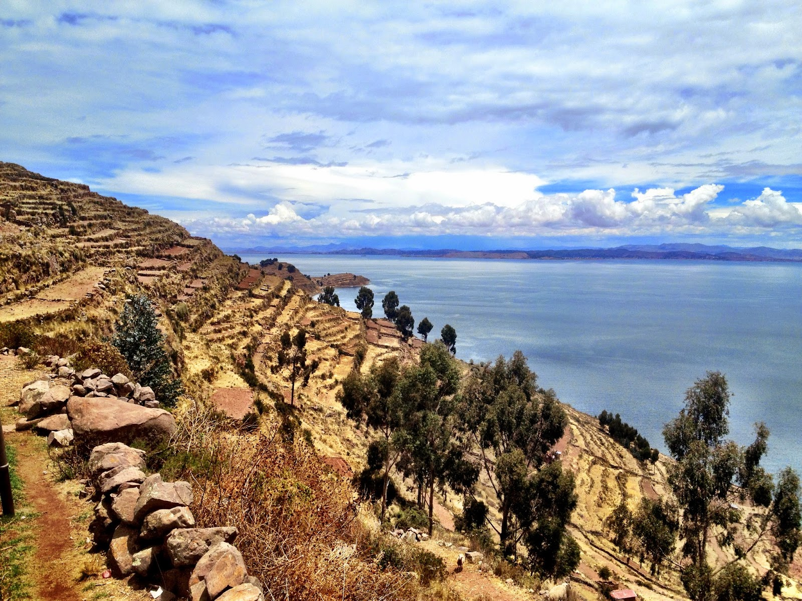 Farming terraces down to the sea - Taquile Island