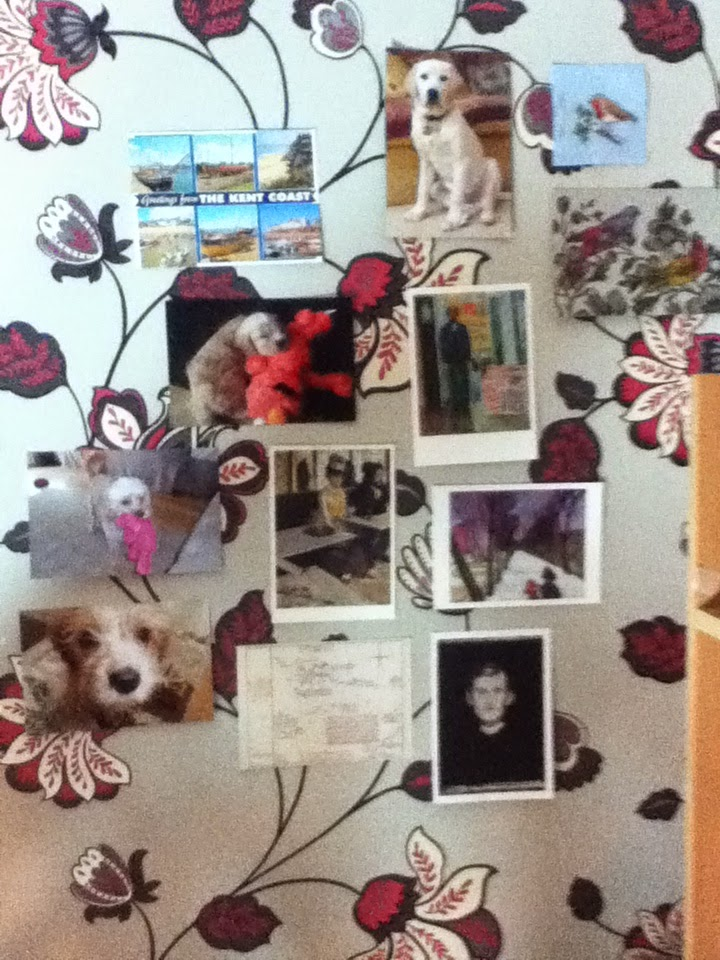 Shows postcard on wall with pictures of my dog and other postcards