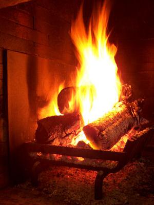 Tracycorrecaminos un t prenavide o - Fuego falso para chimenea ...