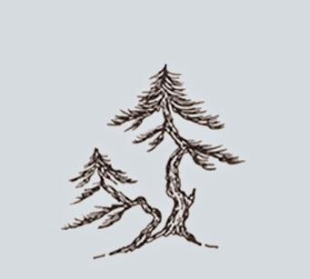 http://evoluzionebonsai.blogspot.it/2015/02/stili-bonsai-soju-padremadre-e-figlio.html