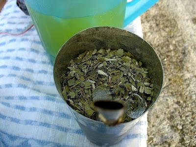 Erva mate utilizada para o preparo de chás que pode ser bebido quente ou gelado, e o famoso chimarrão