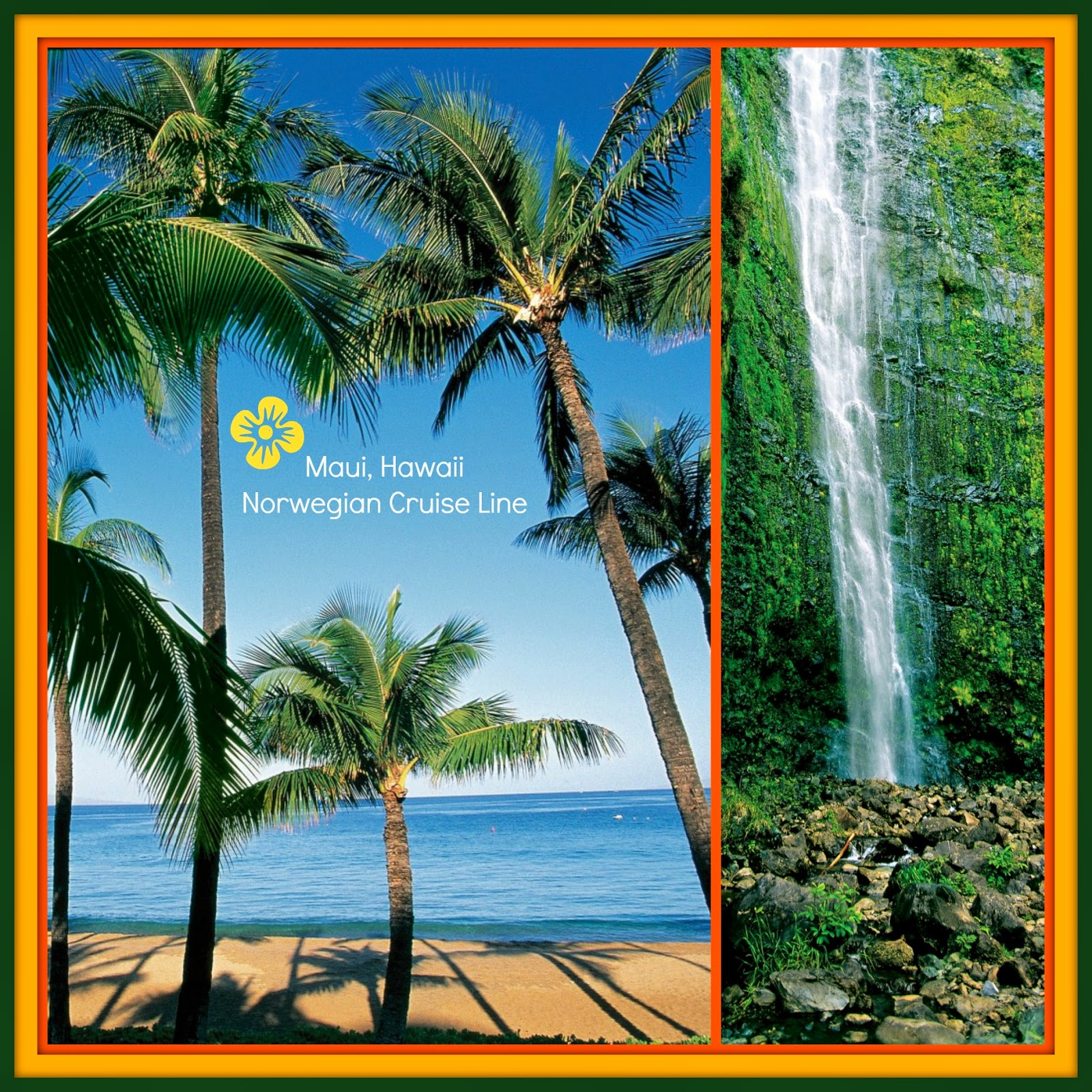 A Pristine Beach Warm Tropical Breezes And The Love Of: Linda With Zoe's Cruises & Tours