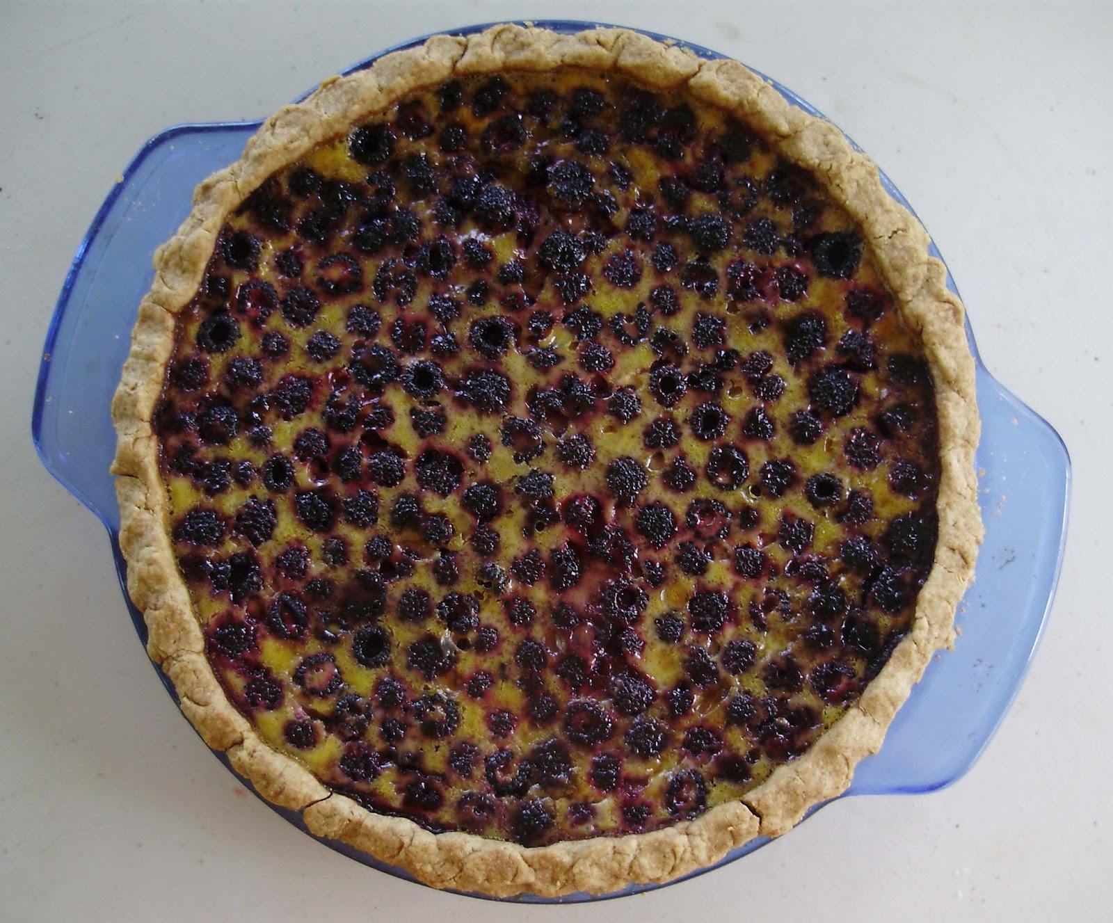Baked Raspberry Custard Recipe — Dishmaps