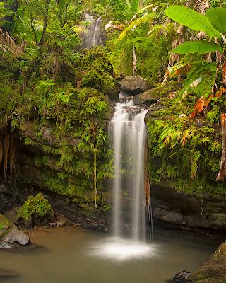 El Yunque: Juan Diego Falls