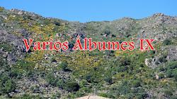 VARIOS ÁLBUMES IX