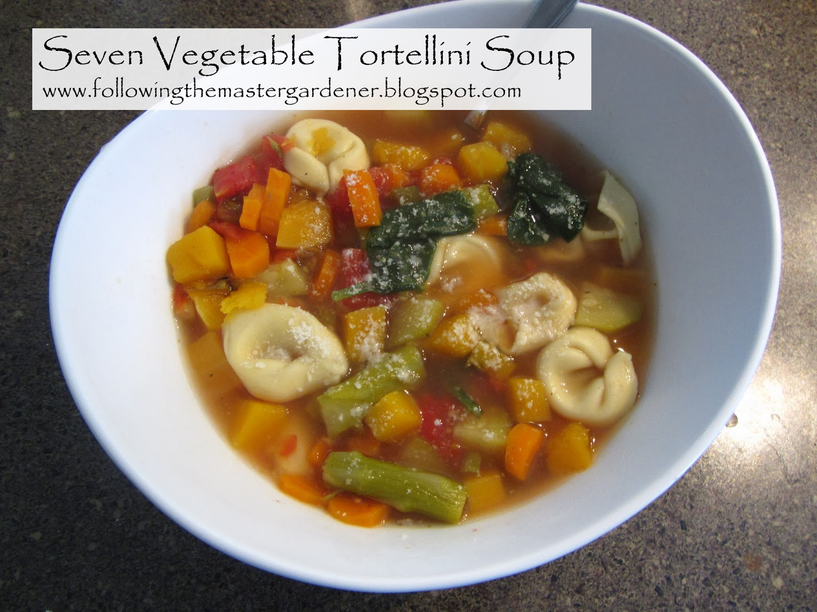... Master Gardener: Seven Vegetable Tortellini Soup (in a Slow Cooker