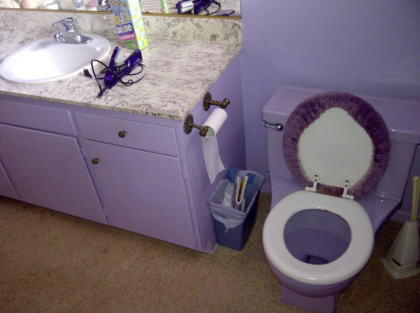 Mid century bathrooms