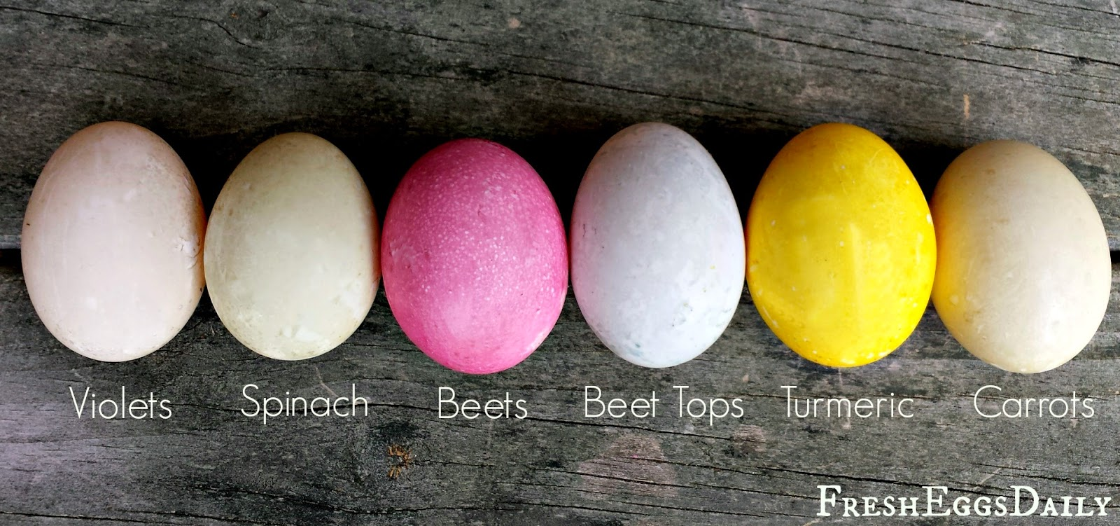 natural easter egg dyes fresh eggs daily