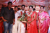 Amala Paul Al Vijay wedding Photos gallery-thumbnail-14