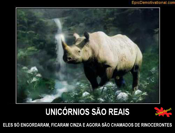 unicornios, existem, rinoceronte, eeeita coisa