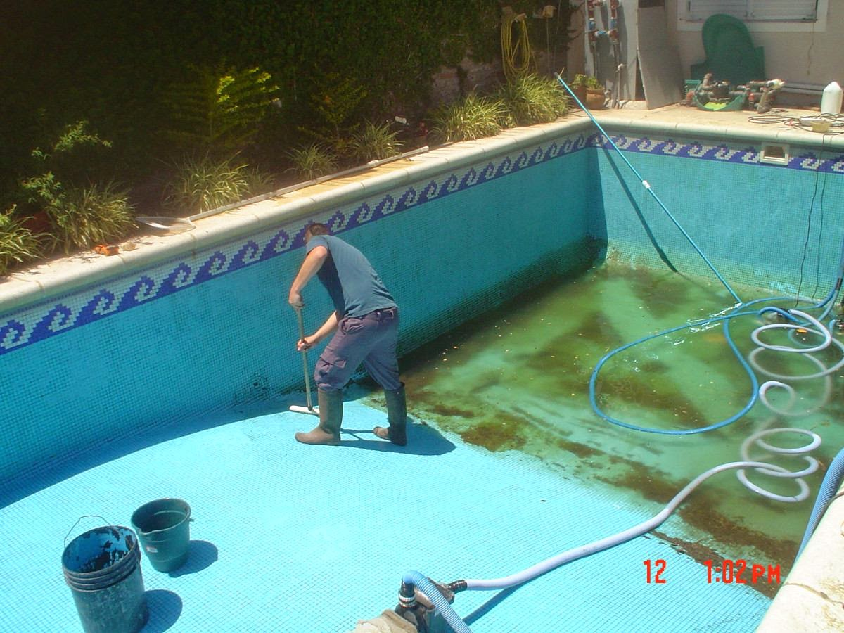 como iniciar su negocio de limpieza de piscinas ideas de