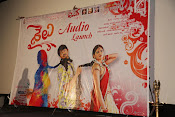 Shailu movie audio release function-thumbnail-1