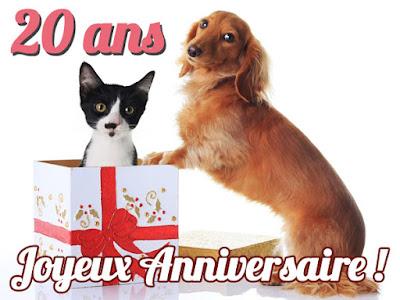anniversaire humour 20 ans