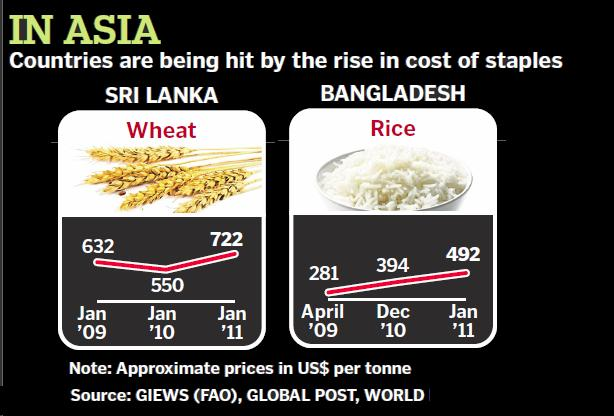 increased food prices effect on poor The growing demand for bio-energy will have a negative and positive effect on food higher food prices can increase food insecurity among the urban poor and food insecurity for the poor may increase if bio-fuel production implications for food security and the impact on the.