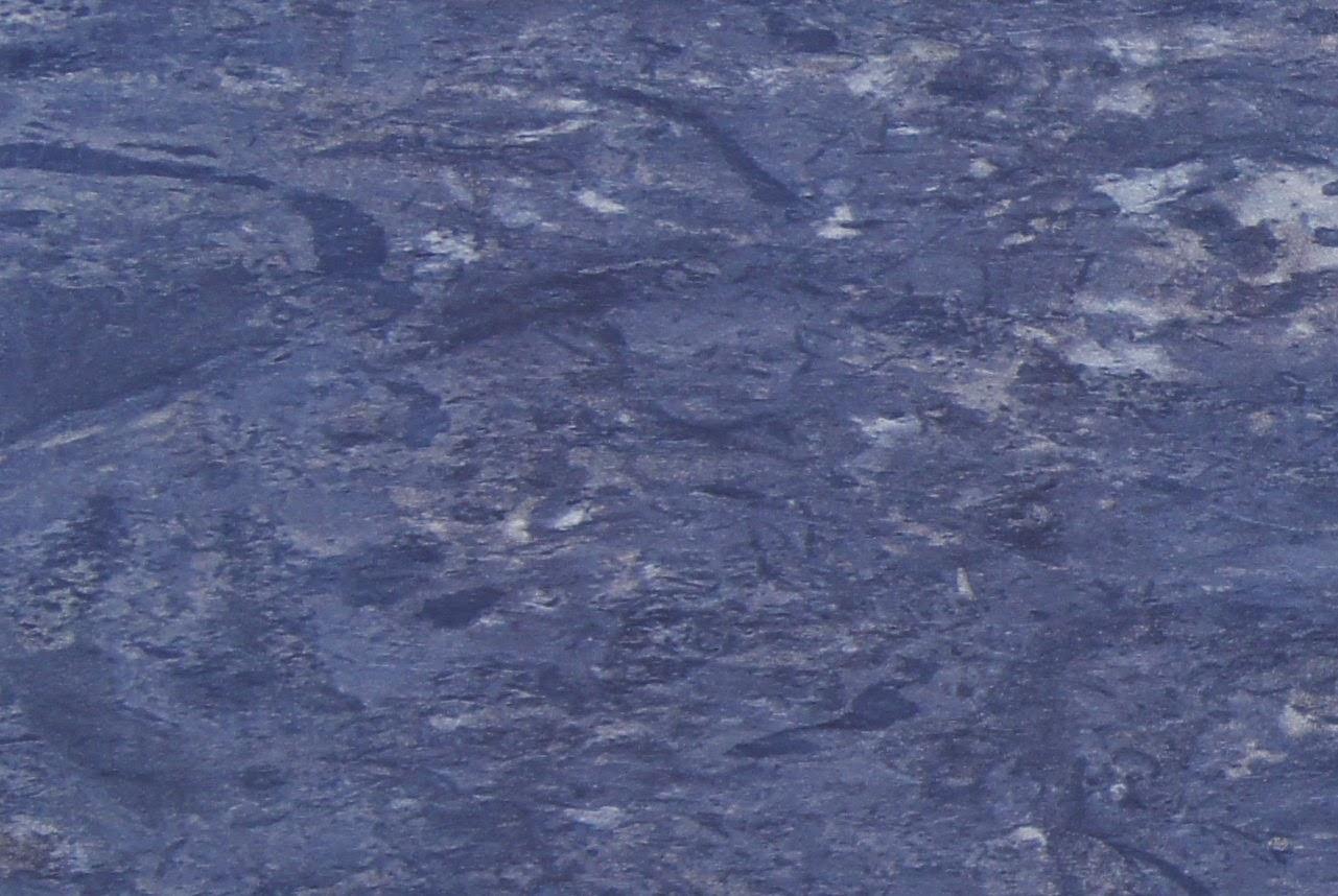 岩石と土の表情: 稲井石の生物擾...