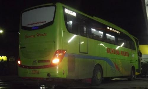 Supir Bus