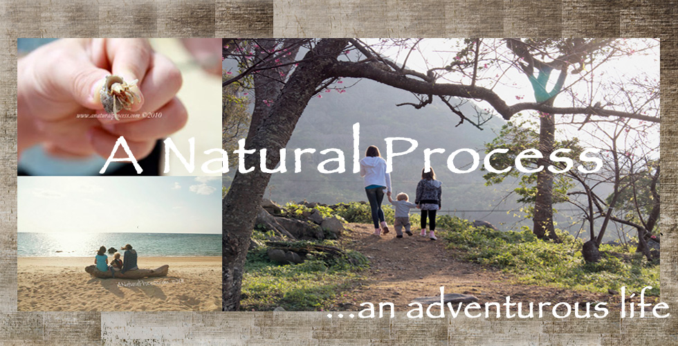 A Natural Process... an adventurous life