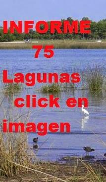 Informe de 75 Lagunas,2015