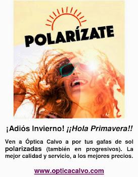 ¡POLARÍZATE! Gafas de sol polarizadas.