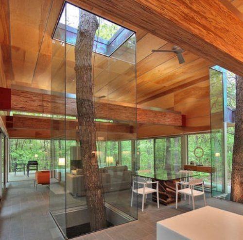 trees interior design home - photo #24