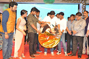 Bhale Bhale Magadivoy audio launch-thumbnail-11