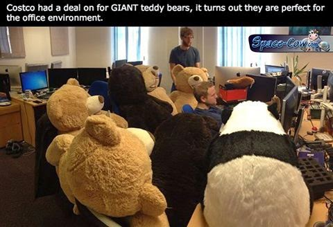 funny teddy bears picture