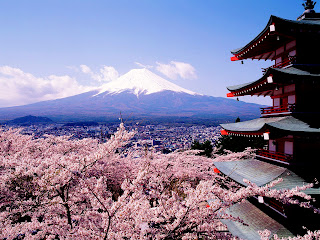 Japan Mount Fuji and Cherry Trees Blossoms HD Wallpaper