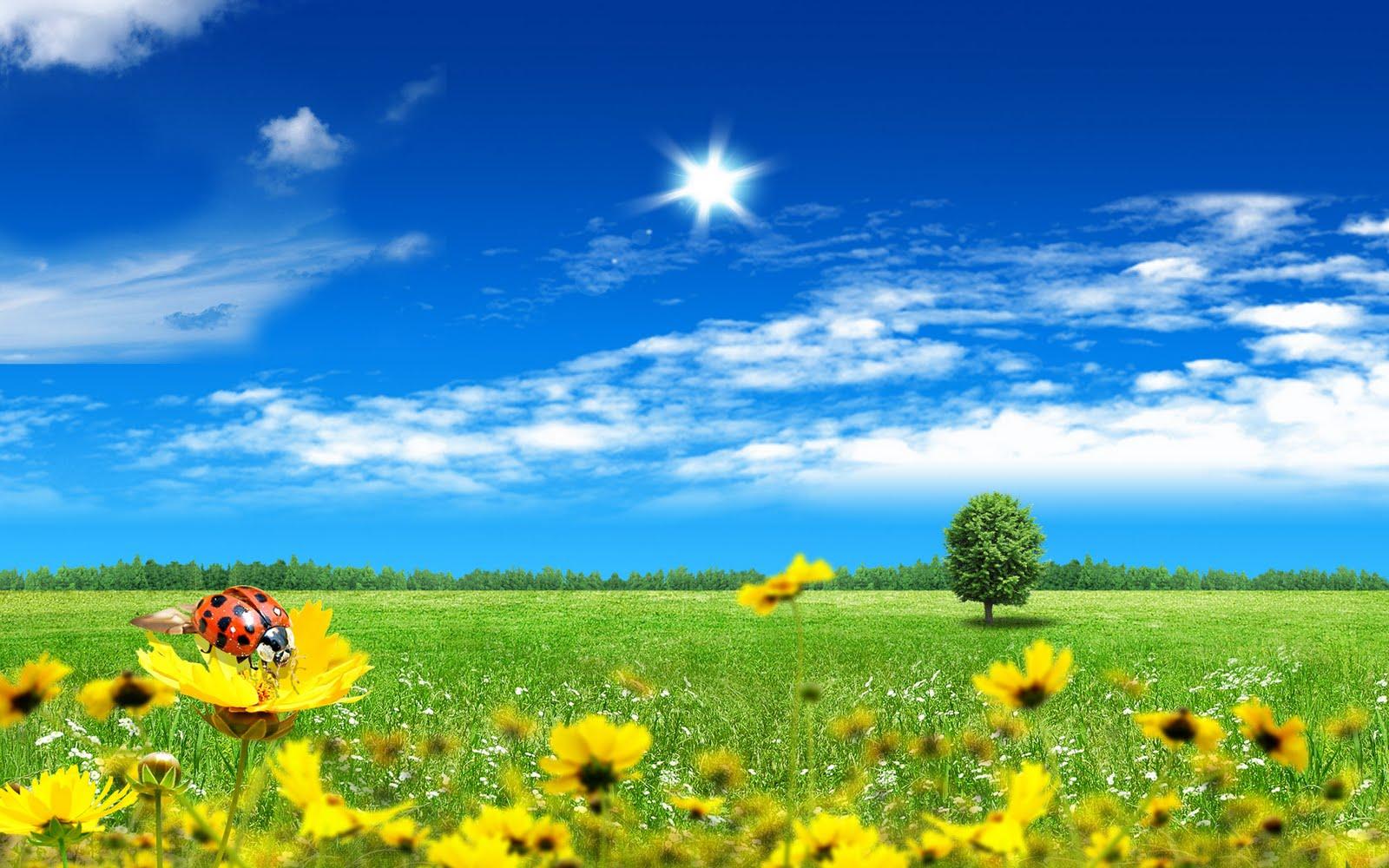 http://2.bp.blogspot.com/-NRtdufrspHo/TmInaLPdW1I/AAAAAAAAAcI/M8N1SSZ2AEo/s1600/Beautiful-Fantasy-Wallpaper-Natural-Desktop-Wallpaper.jpg