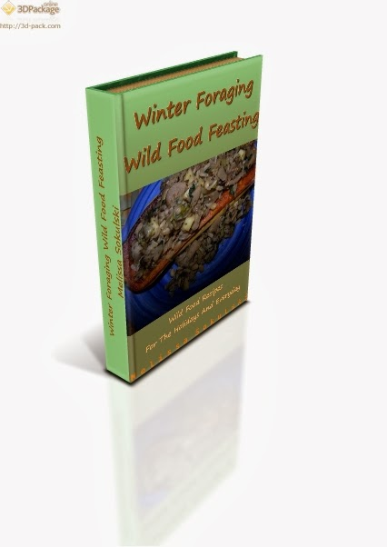 Winter Foraging Wild Food Feasting