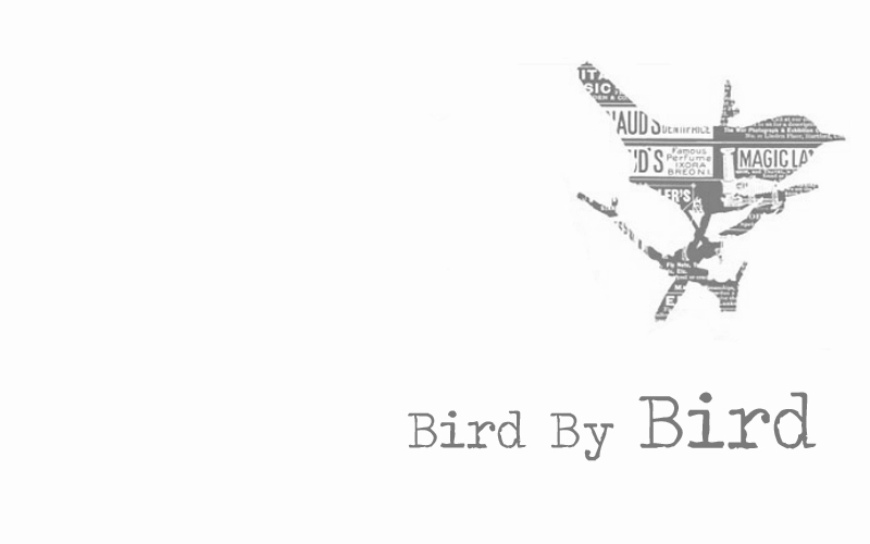 BirdByBird