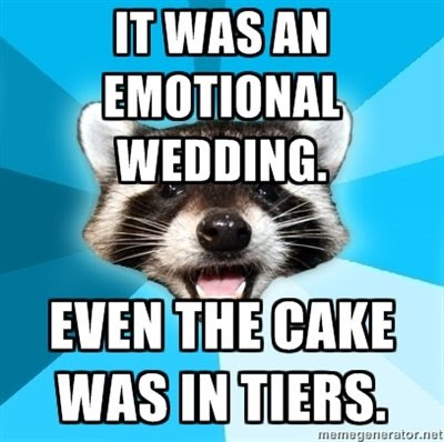 lame pun raccoon - photo #9