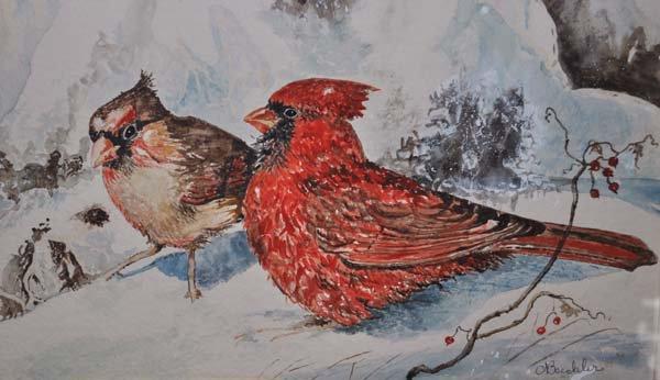 Atraer Aves Silvestres en Tiempo de Invierno - BlueSealStores.com