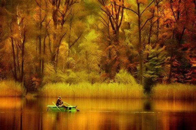 beautiful+nature+1