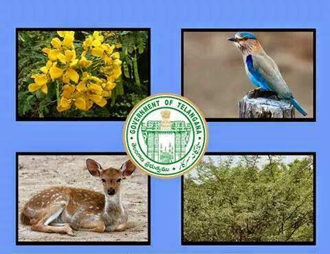 Go Ms 23 State Symbols Of Telangana State Declared Tspsc Vro Exam