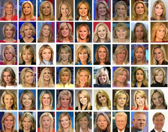 Fox Anchors Diversity