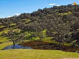 El Parque Natural de la Sierra de Aracena