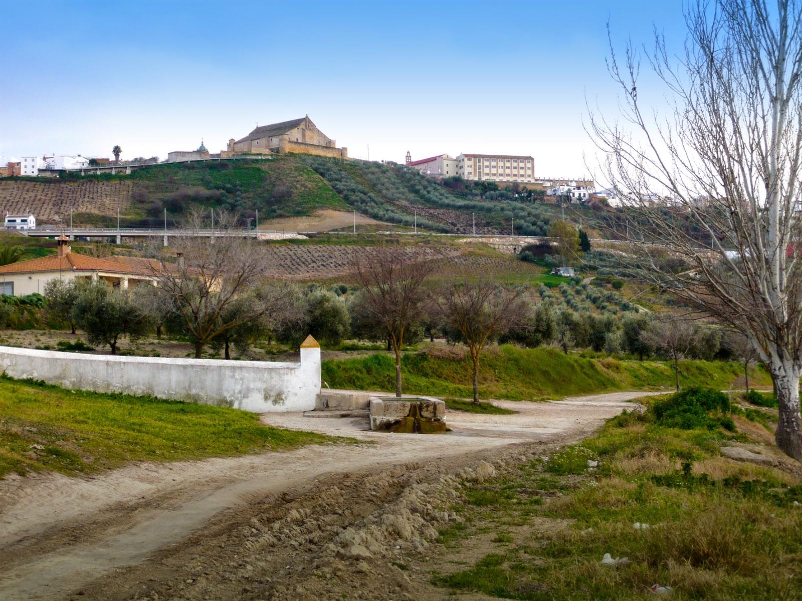 Vista del Castillo de Montilla desde la Fuente Nueva