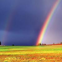 Covenant Rainbow