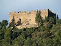 Detall del Castell de Balsareny