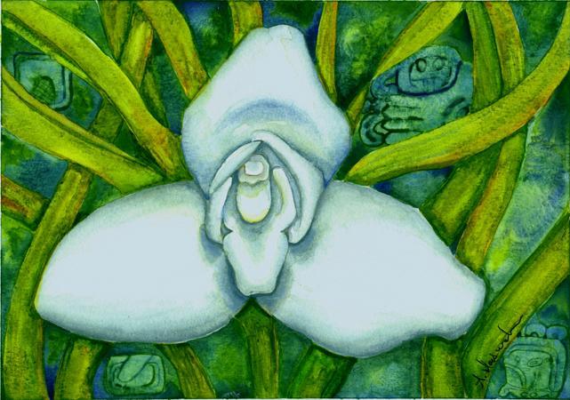 Orgullo Guatemalteco: La Monja Blanca, Flor Nacional de Guatemala