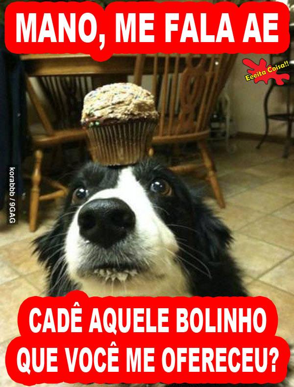 cachorro, bolinho, cupcake, sacanagem, eeeita coisa