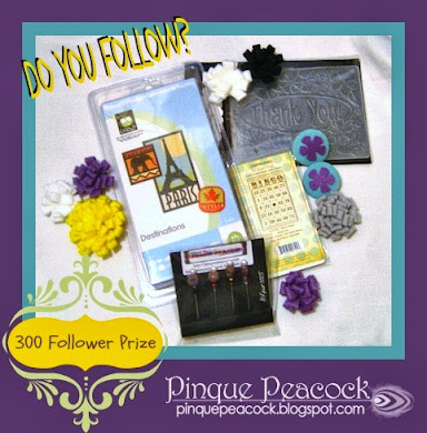 300 Blog Follower PRIZE