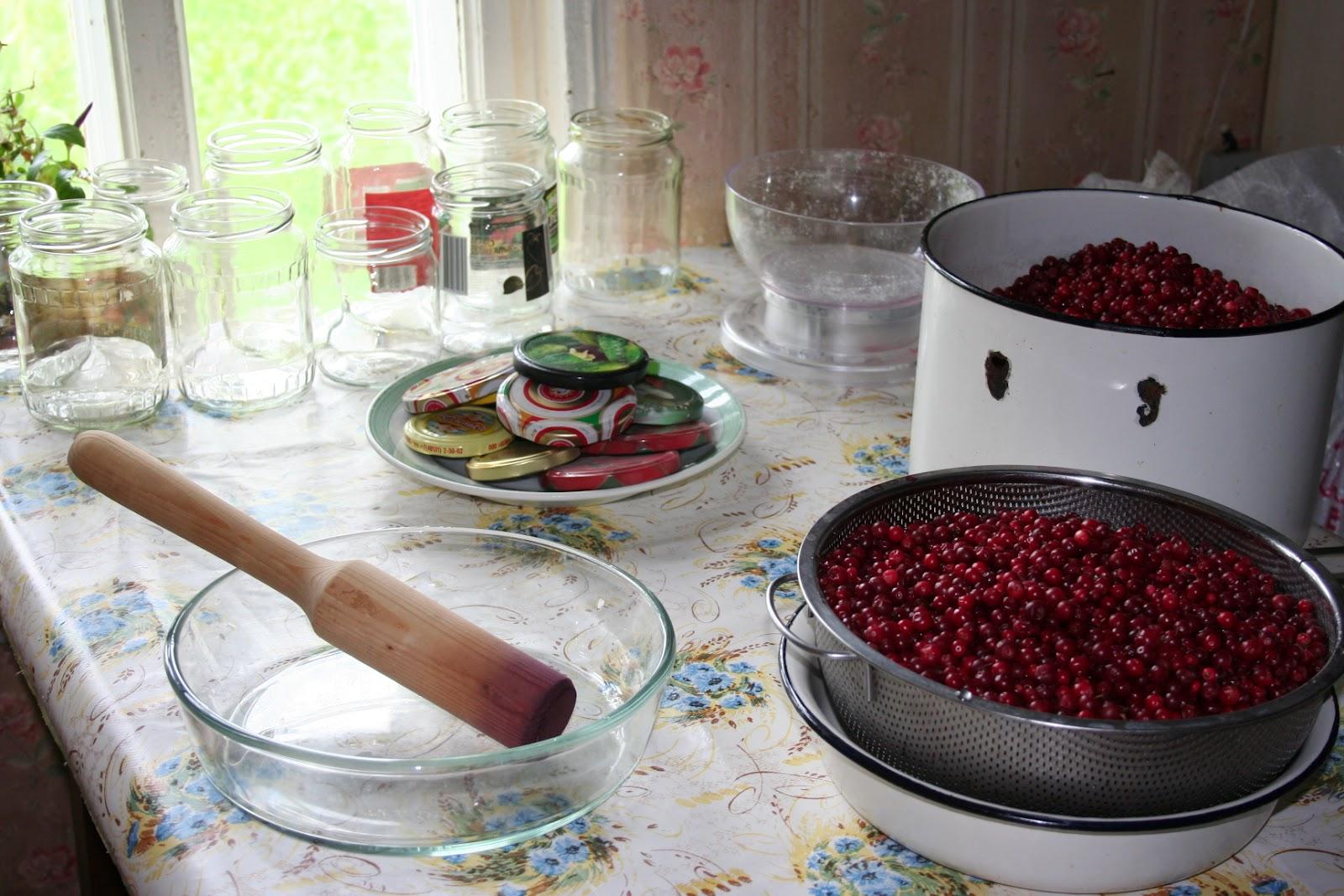 Как сделать сушеную бруснику